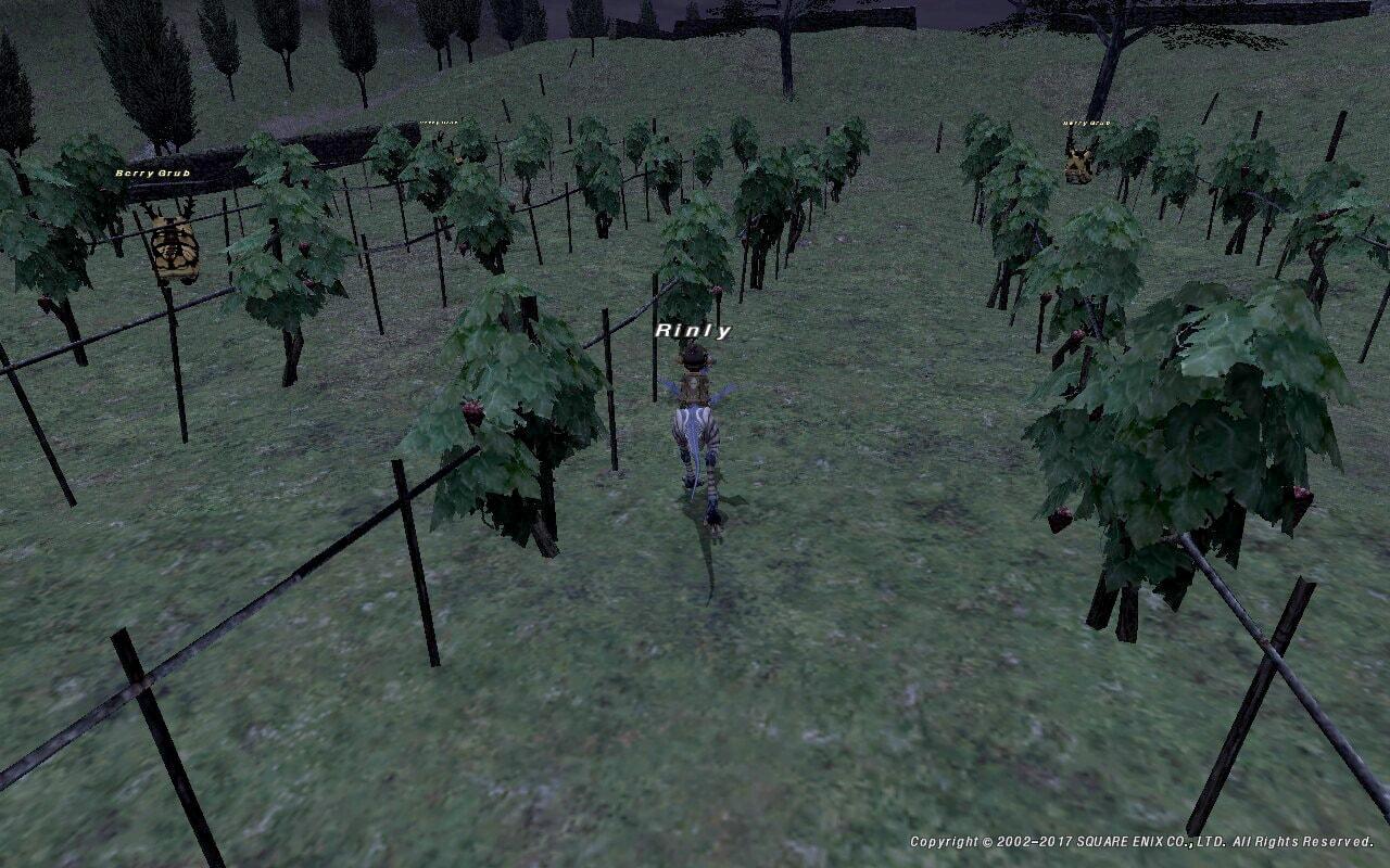 ロランベリー畑
